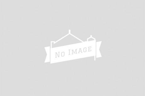 横浜 フリューリングスフェスト 2015